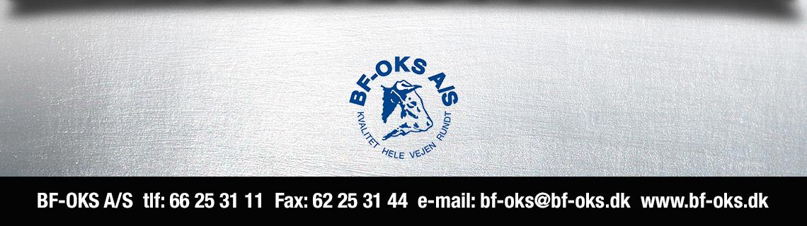 BF_OKS_logo_langt