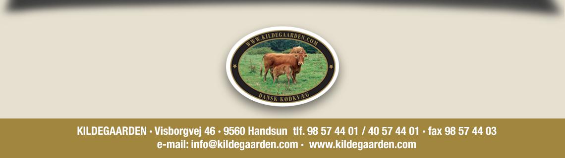 KILDEGAARDEN_LOGO